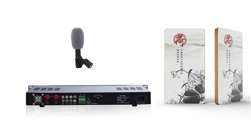科力沃 CLW-660 扩声系统(两只平板音箱)